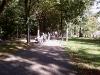 Cros Sarbatoarea Castanelor 25.09.2010 – Baia Mare